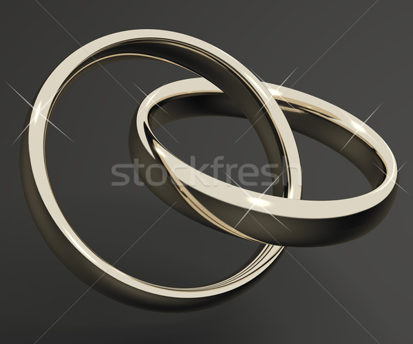 Silver Or White Gold Rings Representing Love Valentines And Roma Stock photo © stuartmiles