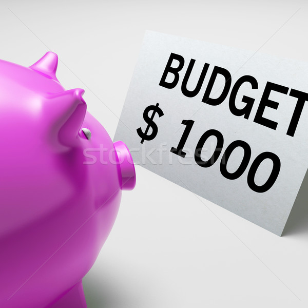 Budget Dollars Shows Spending And Costs Savings Stock photo © stuartmiles