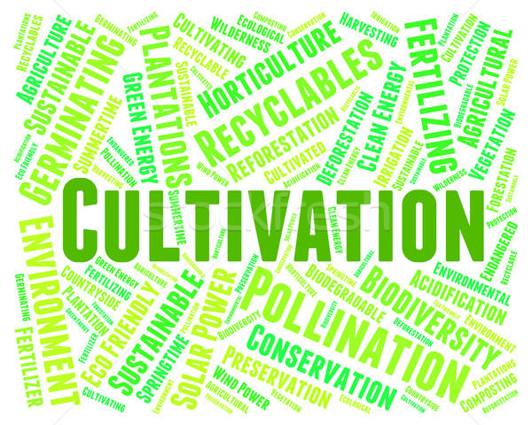 Cultivation Word Means Sow Grow And Farming Stock photo © stuartmiles