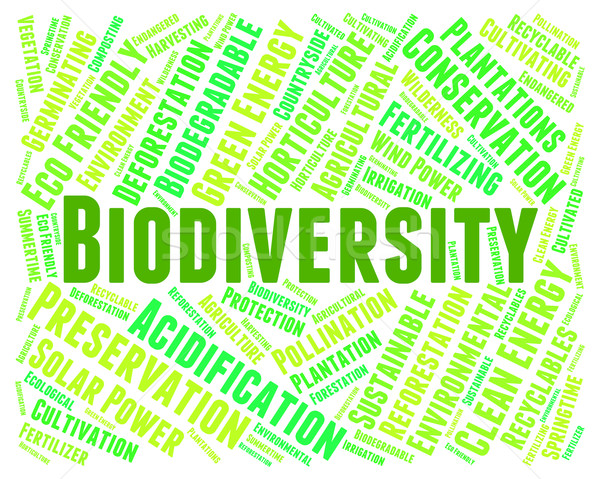 Biodiversity Word Indicates Plant Life And Animal Stock photo © stuartmiles