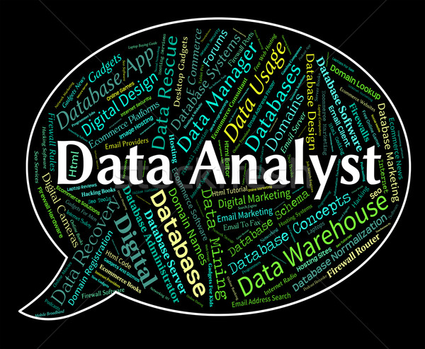 Data Analyst Shows Analyser Words And Analysts Stock photo © stuartmiles