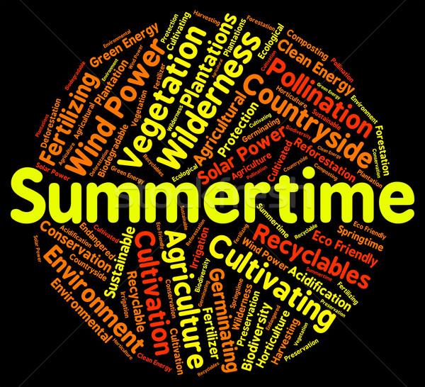 Summertime Word Indicates Hot Weather And Season Stock photo © stuartmiles