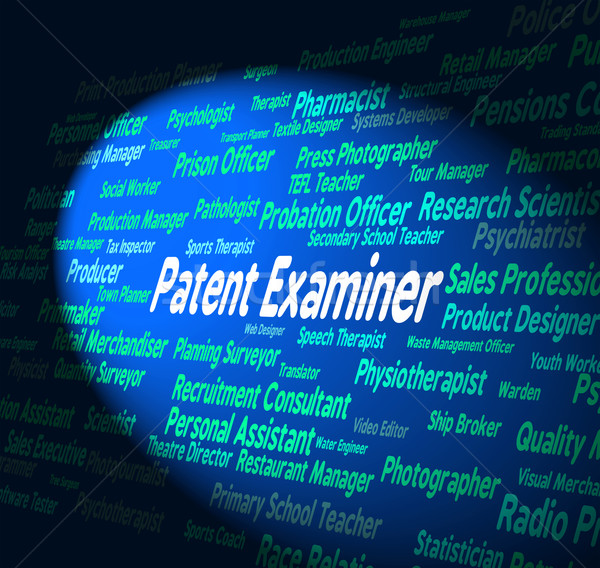 Patent Examiner Represents Legal Protection And Adjudicator Stock photo © stuartmiles