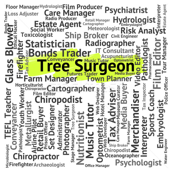 Tree Surgeon Shows General Practitioner And Md Stock photo © stuartmiles