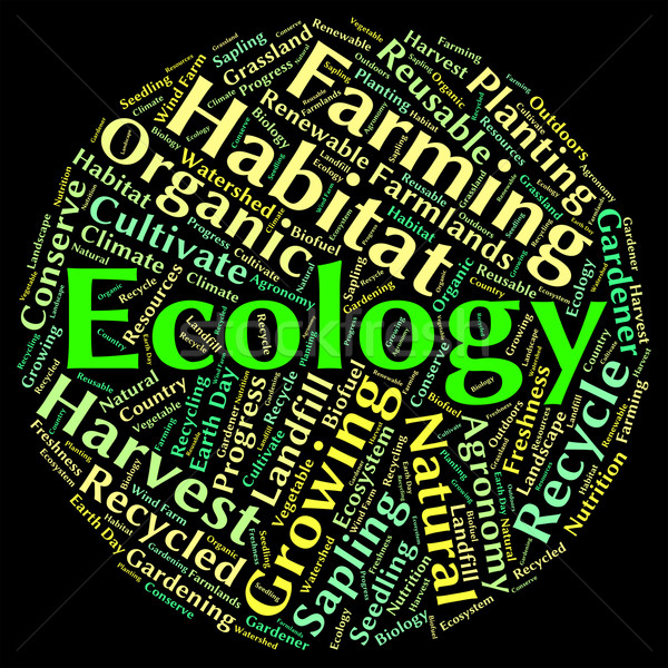 Ecology Word Indicates Protected Protection And Earth Stock photo © stuartmiles