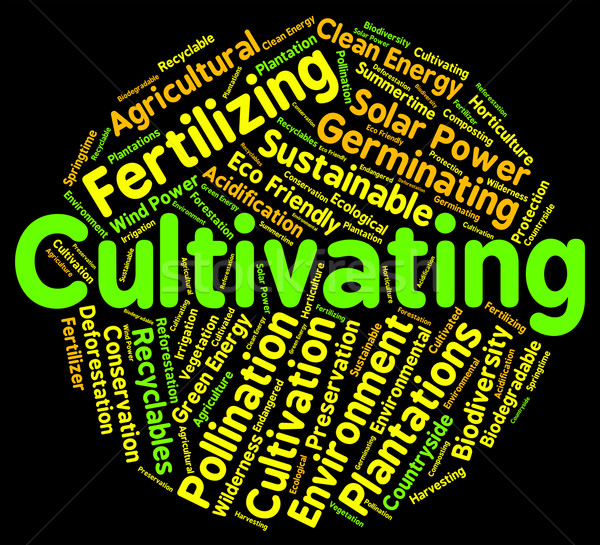 Cultivating Word Represents Grows Sowing And Sow Stock photo © stuartmiles