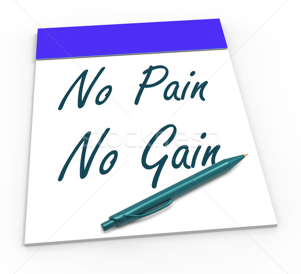 No Pain No Gain Means Toil And Achievements Stock photo © stuartmiles