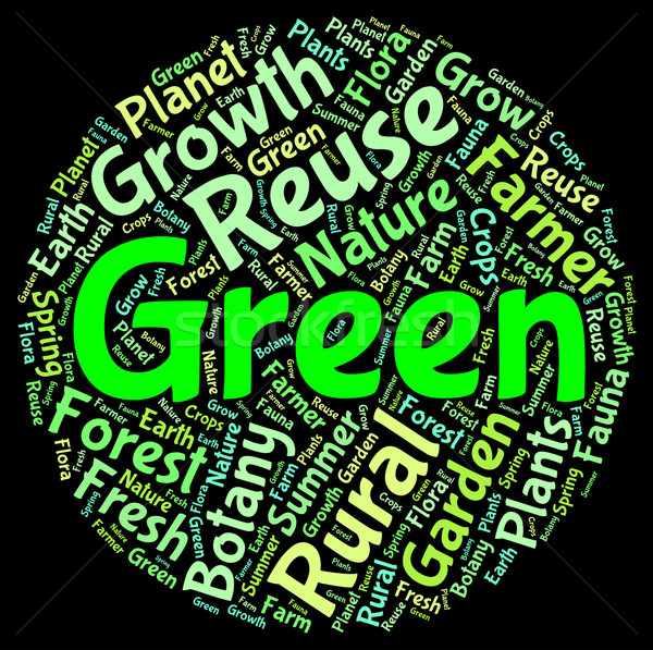 Green Eco Word Indicates Earth Day And Eco-Friendly Stock photo © stuartmiles