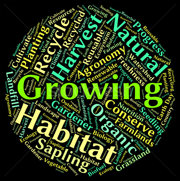 Stock photo: Growing Word Means Growth Sowing And Sow
