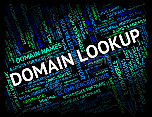 Domain Lookup Means Realm Dominions And Research Stock photo © stuartmiles