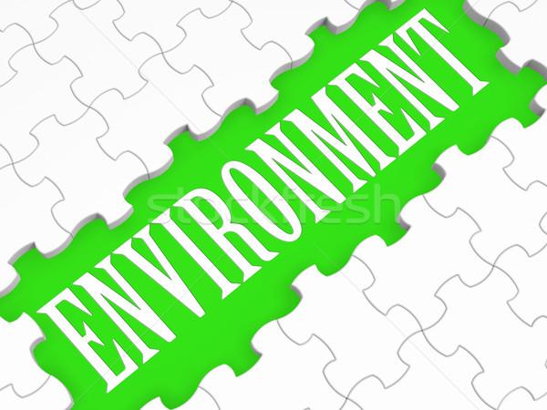 Environment Puzzle Shows Ecological Conservation Stock photo © stuartmiles