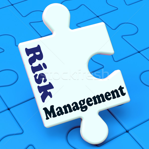 Risk Management Means Analyze Evaluate Avoid Crisis Stock photo © stuartmiles