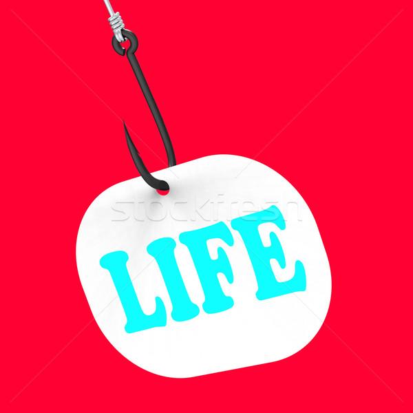 Life On Hook Shows Happy Lifestyle Or Prosperity Stock photo © stuartmiles