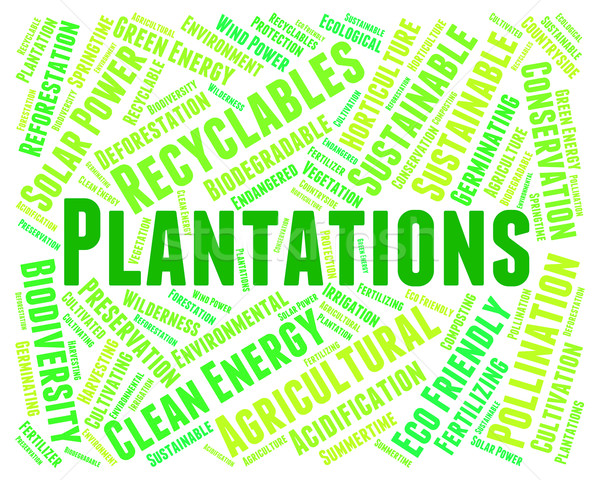 Plantations Word Means Agriculture Ranch And Text Stock photo © stuartmiles