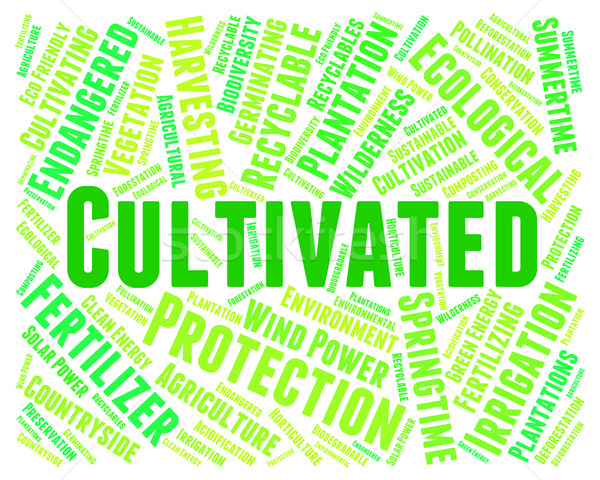 Cultivated Word Indicates Words Cultivation And Text Stock photo © stuartmiles