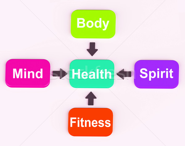Health Diagram Shows Mental Spiritual Physical And Fitness Wellb Stock photo © stuartmiles