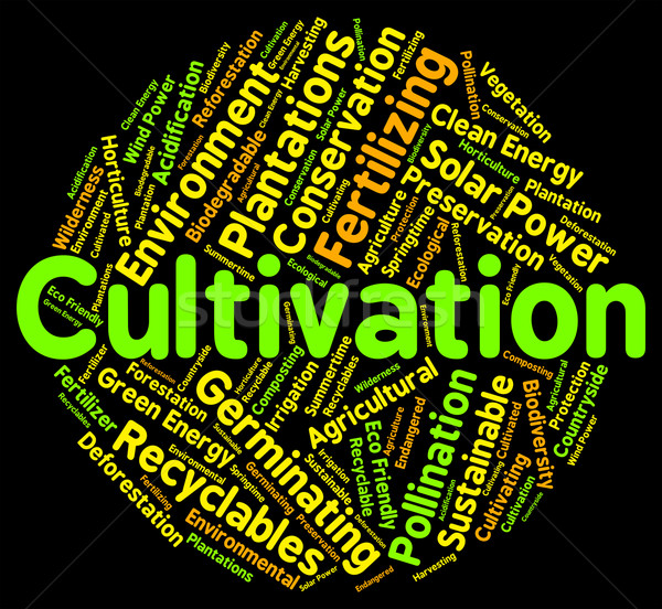 Cultivation Word Shows Growth Farm And Text Stock photo © stuartmiles