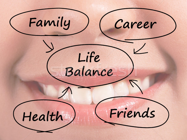 Life Balance Diagram Showing Family Career Health And Friends Stock photo © stuartmiles