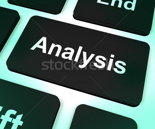 Analysis Computer Key Showing Checking And Examining Stock photo © stuartmiles