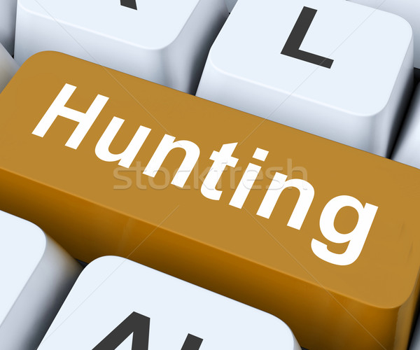 Hunting Key Means Exploration Or Searching Stock photo © stuartmiles