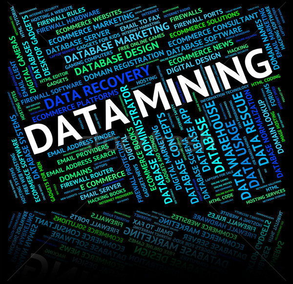 Dados mineração palavra significado fato palavras Foto stock © stuartmiles