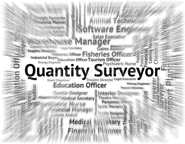 Quantity Surveyor Indicates Text Word And Employment Stock photo © stuartmiles