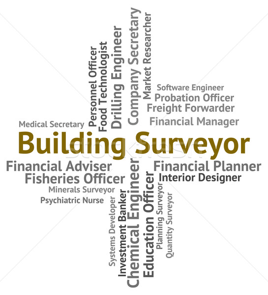 Building Surveyor Means Houses Measurer And Career Stock photo © stuartmiles