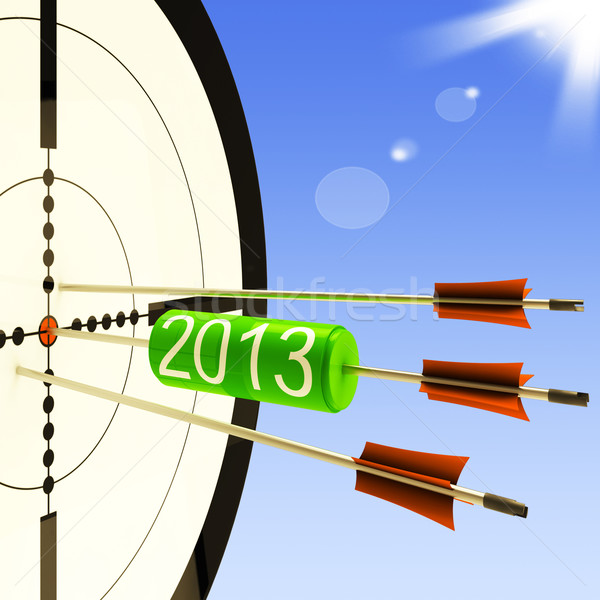 2013 Target Shows Business Plan Forecast Stock photo © stuartmiles