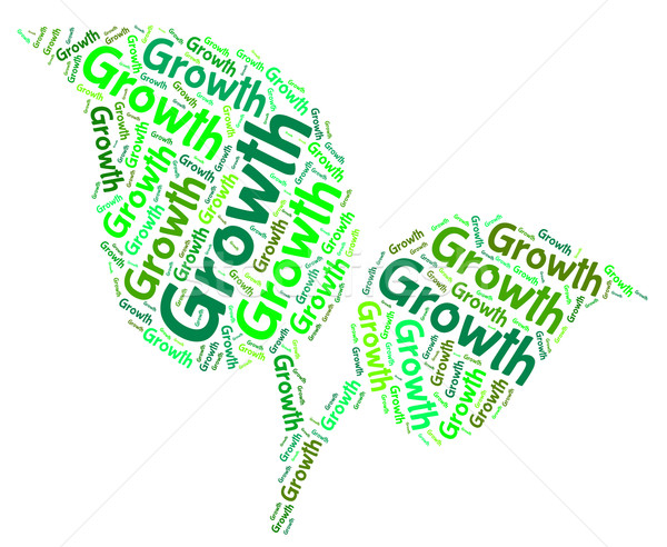 Growth Word Indicates Grows Words And Cultivates Stock photo © stuartmiles