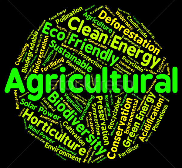 Agricultural Word Shows Cultivates Agriculture And Farms Stock photo © stuartmiles