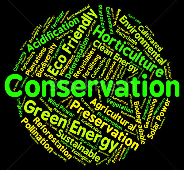 Conservation Word Shows Earth Friendly And Conserving Stock photo © stuartmiles