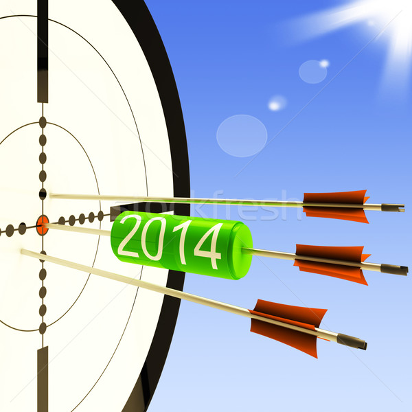 2014 Target Shows Business Plan Forecast Stock photo © stuartmiles