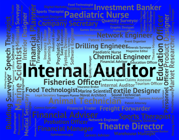 Internal Auditor Shows Occupations Hiring And Job Stock photo © stuartmiles
