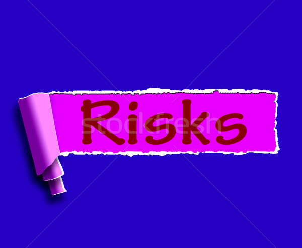 Risks Word Means Investing Online Profit And Loss Stock photo © stuartmiles