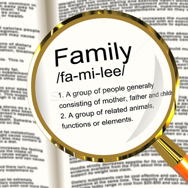 Family Definition Magnifier Showing Mom Dad And Kids Unity Stock photo © stuartmiles