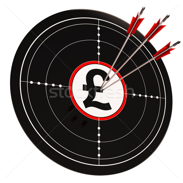 Pond target geld investering tonen succes Stockfoto © stuartmiles