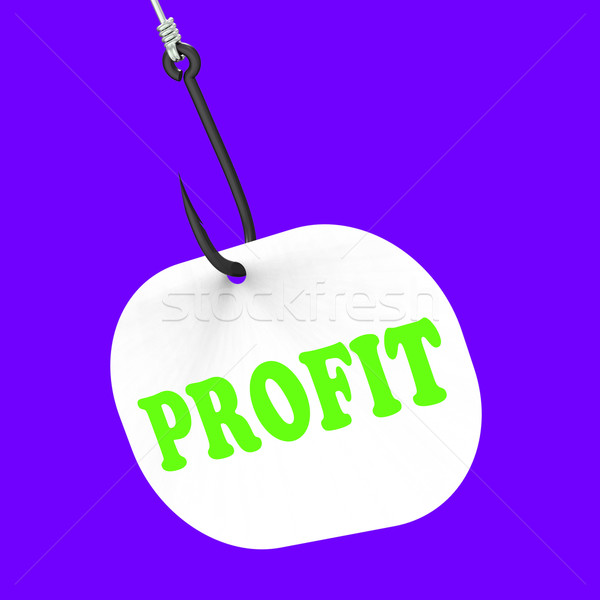 Profit On Hook Shows Financial Incomes And Earnings Stock photo © stuartmiles