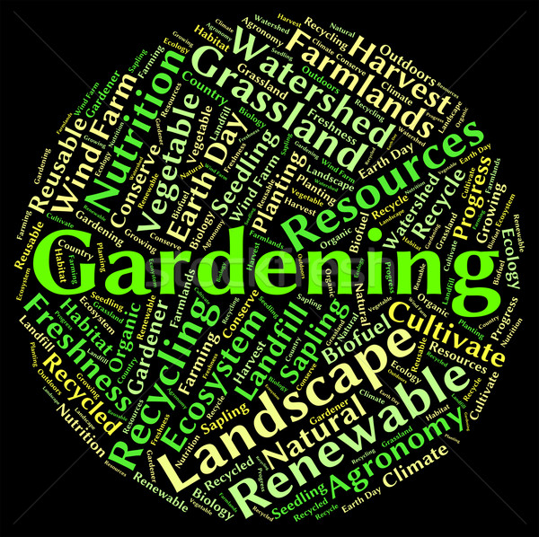 Gardening Word Represents Outdoors Outside And Planting Stock photo © stuartmiles