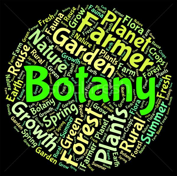 Botany Word Indicates Plant Life And Botanical Stock photo © stuartmiles
