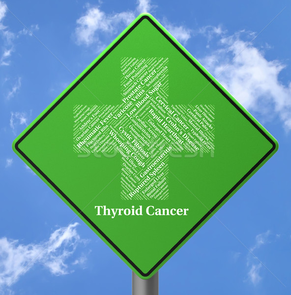 Thyroid Cancer Represents Endocrine Gland And Afflictions Stock photo © stuartmiles