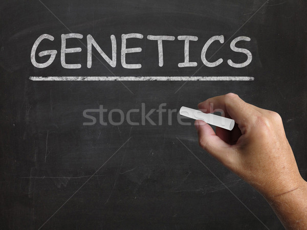 Genetics Blackboard Means Genes DNA And Heredity Stock photo © stuartmiles