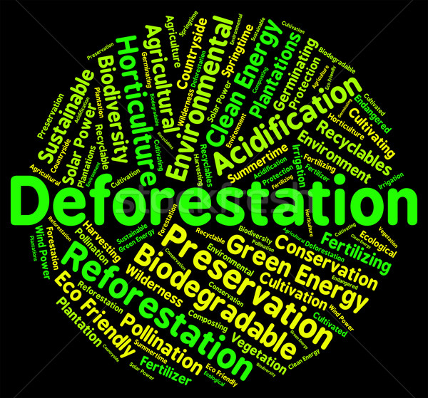 Deforestation Word Shows Cut Down And Clear Stock photo © stuartmiles