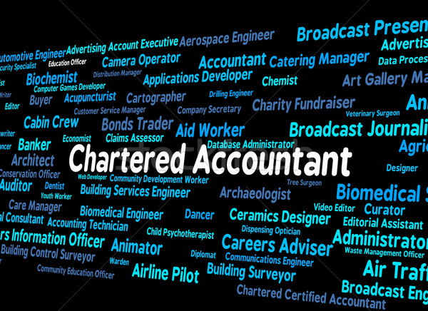 Chartered Accountant Represents Balancing The Books And Accounta Stock photo © stuartmiles
