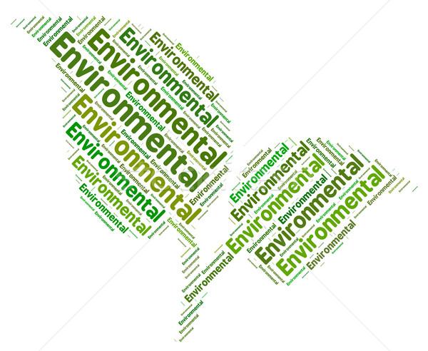 Környezeti szó zöld Föld környezetbarát mutat Stock fotó © stuartmiles