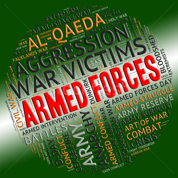 Armed Forces Shows Military Service And Arms Stock photo © stuartmiles
