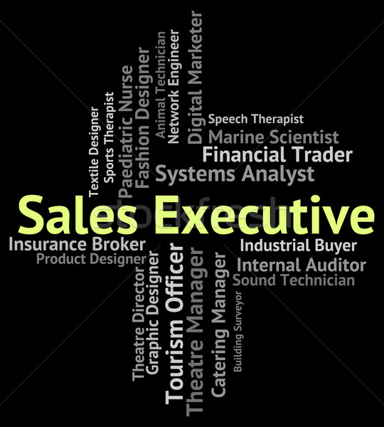 Sales Executive Means Senior Administrator And Career Stock photo © stuartmiles