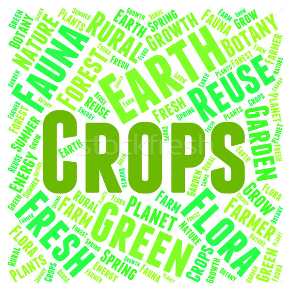 Crops Word Means Plant Grains And Yield Stock photo © stuartmiles