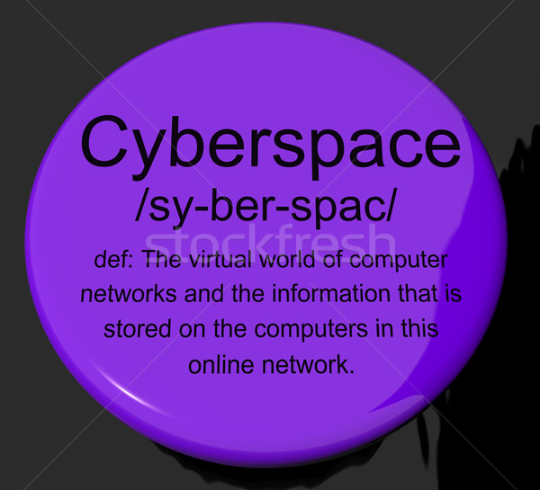 Cyberspazio definizione pulsante virtuale mondo Foto d'archivio © stuartmiles