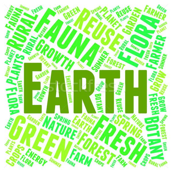Föld szófelhő zöld szöveg természetes szó Stock fotó © stuartmiles
