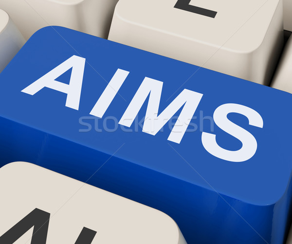 Aims Key Shows Goals Purpose And Aspirations Stock photo © stuartmiles